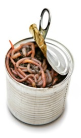can-of-worms[1]